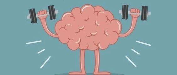如何保养好大脑?|「创业者养生指南」